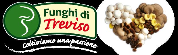 Consorzio Funghi Treviso Logo